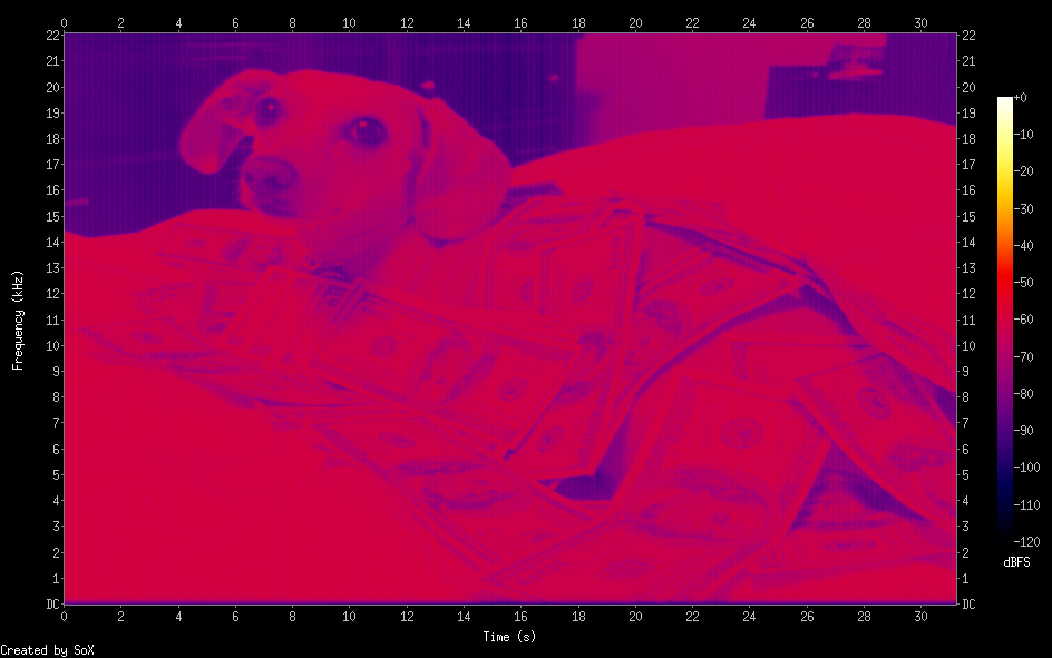 Spectrogram of a dog